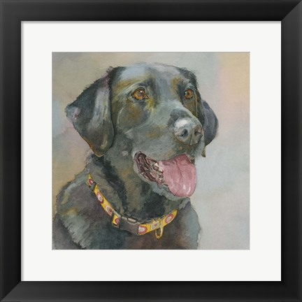 Framed Harper Black Lab Print