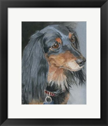 Framed Natalie Long-haired Dachshund Print