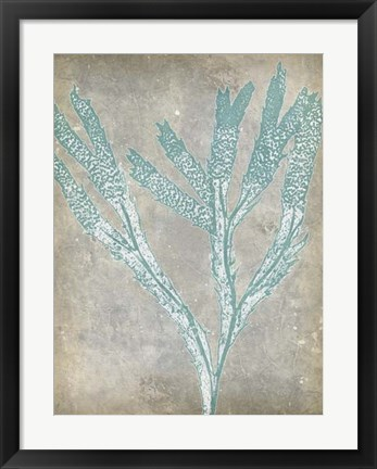 Framed Spa Seaweed II Print