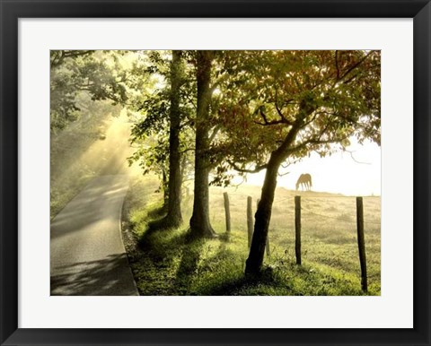 Framed Morning Graze II Print