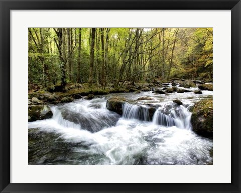 Framed Waterslide Print