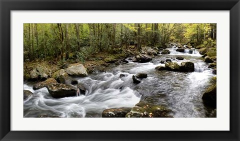Framed Up the Creek Panorama Print