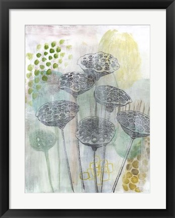 Framed Seed Pod Composition I Print