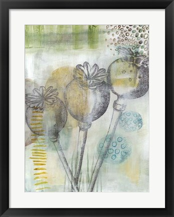Framed Seed Pod Composition II Print