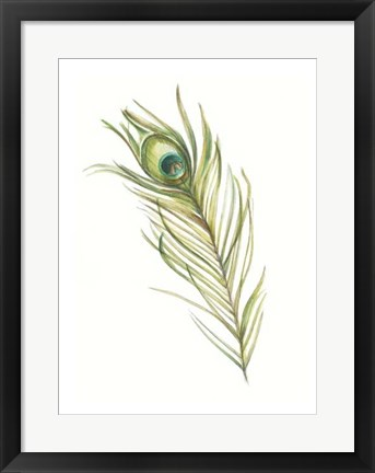 Framed Watercolor Peacock Feather I Print