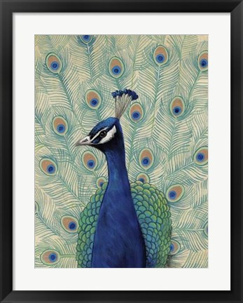 Framed Blue Peacock II Print