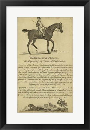 Framed Horse Portraiture V Print