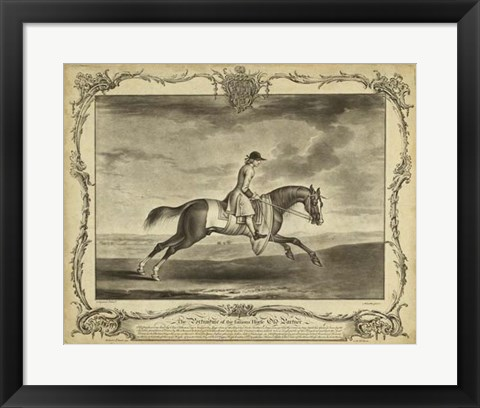 Framed Distinguished Horses I Print