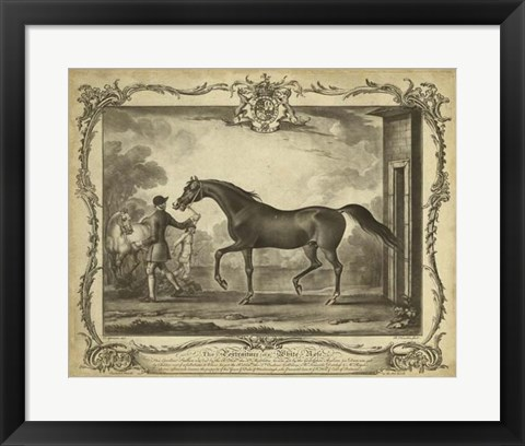 Framed Distinguished Horses IV Print