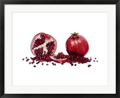 Framed Watercolor Pomegranate Print