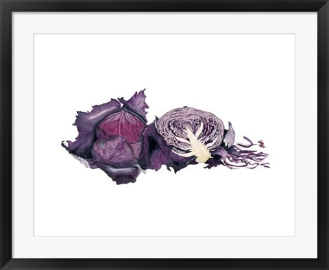 Framed Watercolor Purple Cabbage Print