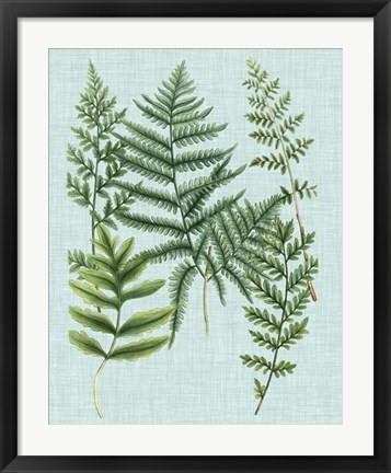Framed Spa Ferns I Print