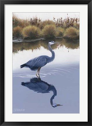 Framed Blackwater Reflections I Print