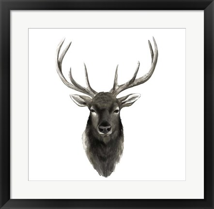 Framed Western Animal Study V Print