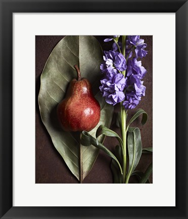 Framed Leaf with Pear 2 Print