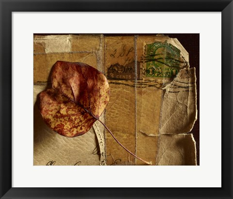 Framed Leaf Envelope Print