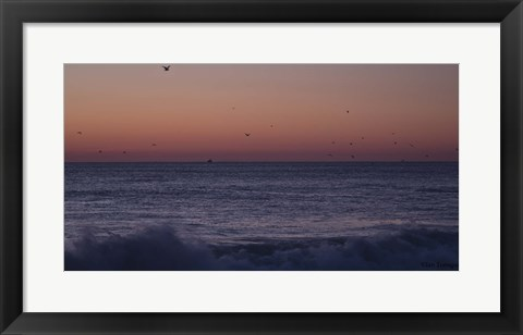 Framed Birds Over Ocean Grove Print