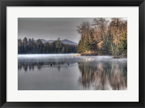 Framed Early Morning Swim Print