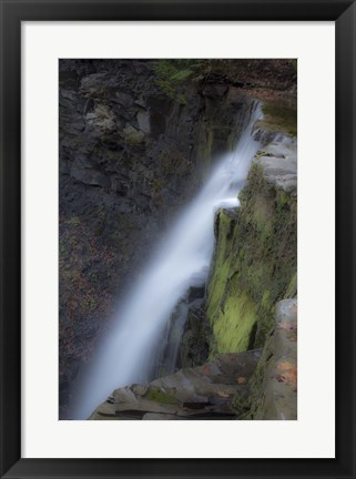 Framed Plotters Kill Preserve Falls Print