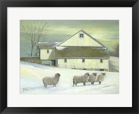 Framed Sheep At Granough Print