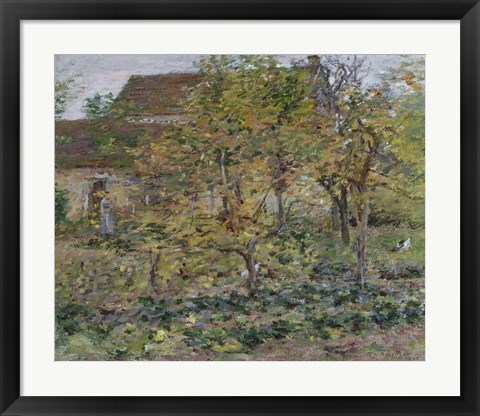 Framed Yellow Apples, 1892 Print