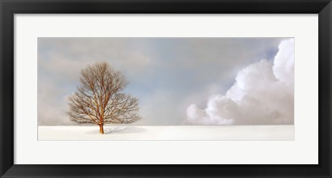 Framed Alone in the Whiteness Print