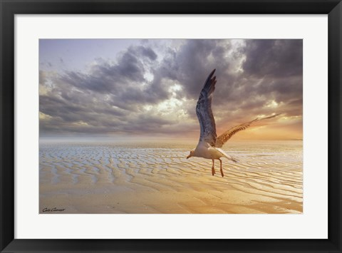 Framed Soft Sunrise on the Beach 5 Print