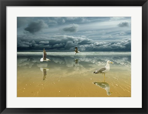 Framed Seagulls on the Beach Print
