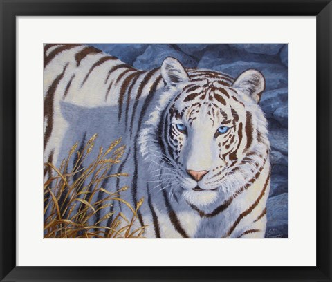 Framed Crystal Eyes Print