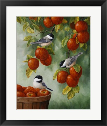 Framed Apple Harvest Chickadees Print