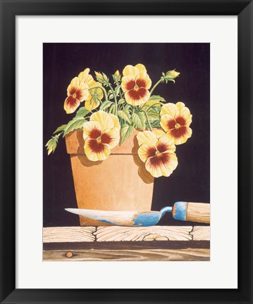 Framed Potted Pansies Print