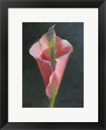 Framed Pink Cala Lily Print