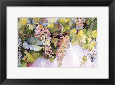 Framed Grapes On The Vine Print