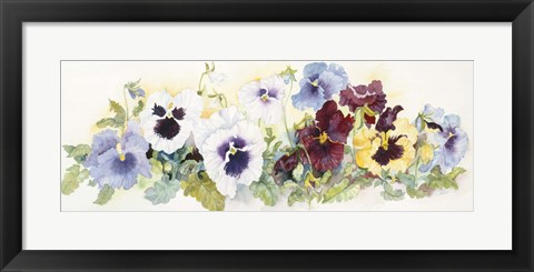 Framed Pansies On Parade Print