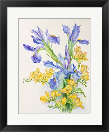Framed Iris With Gold Fuscia Print