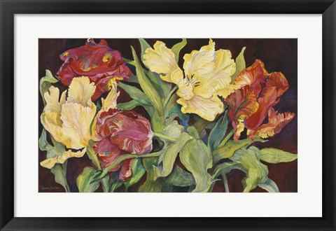 Framed Red And Yellow Parrot Tulips Print