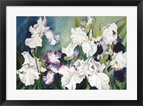 Framed Plum And White Iris Print