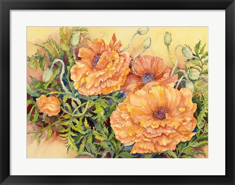 Framed Double Poppies Print