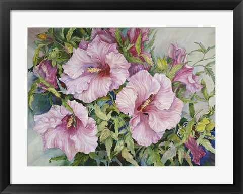 Framed Pink Hibiscus Print