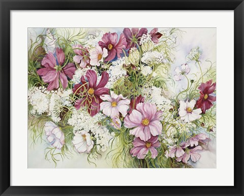 Framed Cosmos And Queen Ann Lace Print