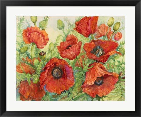 Framed Poppies at their Peak Print