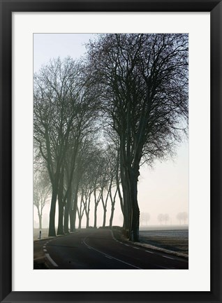 Framed Country Road in Morning Mist Print