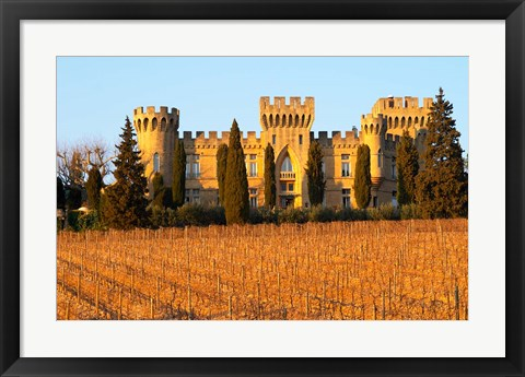 Framed Vineyard with Syrah Vines and Chateau des Fines Roches Print