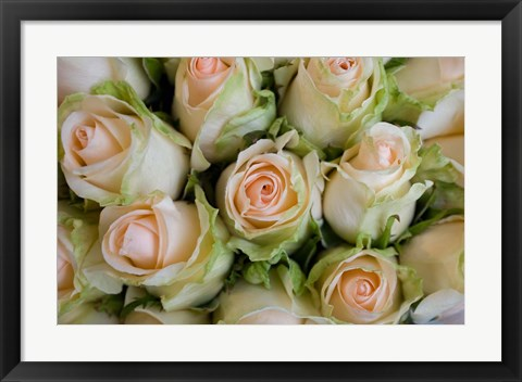 Framed Marche Aux Fleurs, Cours Saleya, French Riviera, France Print