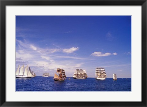 Framed Tall Ships Race in Nova Scotia Print