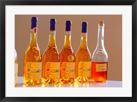 Framed Bottles of Disznoko Winery, Tokaj, Hungary Print