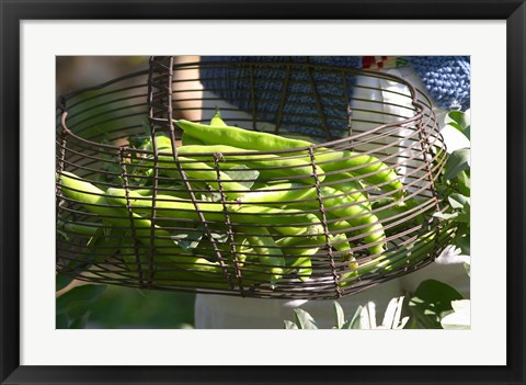 Framed Green Beans in Vegetable Garden Print