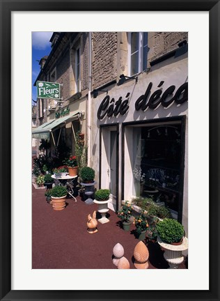 Framed Flower Store, Normandy, France Print