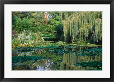 Framed Claude Monet's Garden Pond in Giverny, France Print