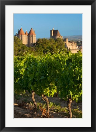 Framed Vineyard Overlooking La Cite Carcassonne Print